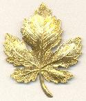 2 1/2'' by 2'' Brass Leaf