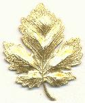 2'' by 1 1/2'' Brass Leaf