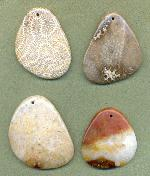 Fossilized Coral Pendants