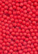 2.5mm Coral Glass No Hole Beads