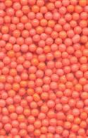 2.2mm Coral Glass No Hole Bead