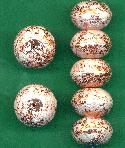 14x21mm MP Copper/White Floral Beads