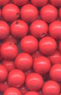 8mm Coral Half Drilled Beads