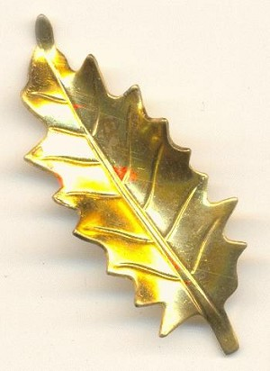 38x15mm Curved Brass Leaf