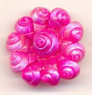 21mm Hot Pink Shell Cluster