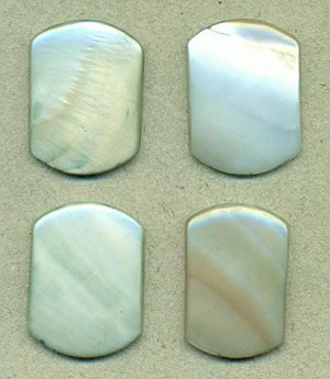 22x17mm Pale Green Natural Shell Stone