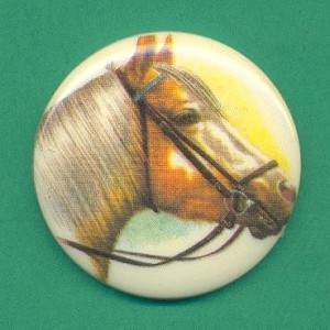 38mm Acrylic Horse Picture Stone